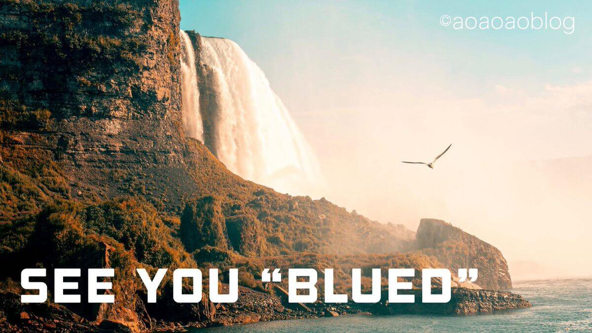 Blued 退会